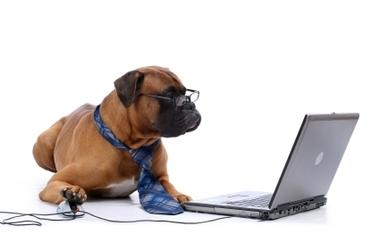 Vælg et online HR kursus med Forretningsdrevet HR fokus