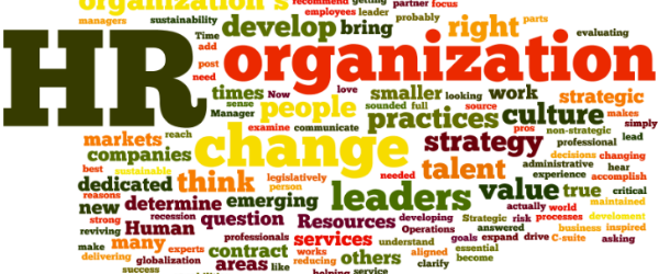 Forretningsdrevet HR Do's & Don'ts #2: HR Faglighed