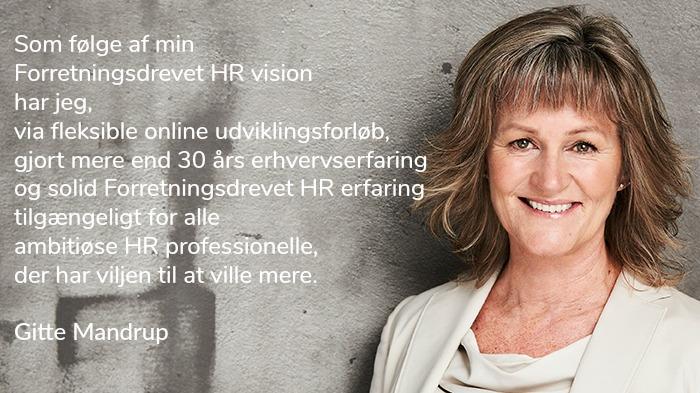Min Forretningsdrevet HR Vision til gavn for dig