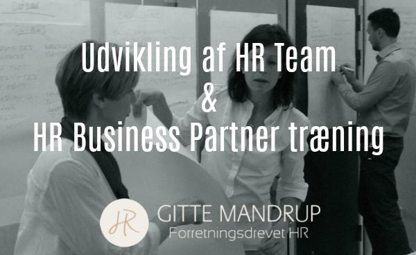 Udvikling af HR team og træning af HR Business Partnere
