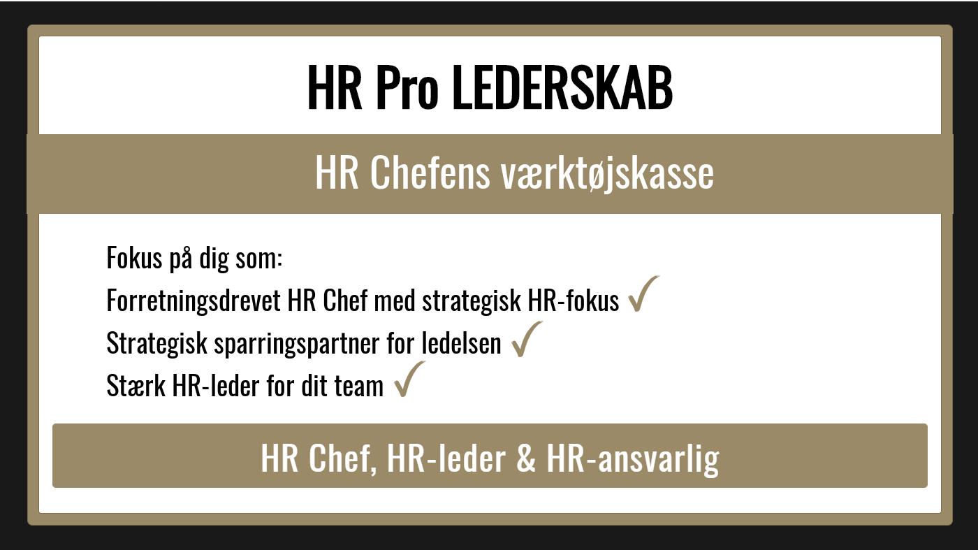 HRProLEDERSKABDIY-GitteMandrup